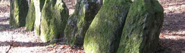 Stonehenge im Säuliamt - Buch von Richard Walker